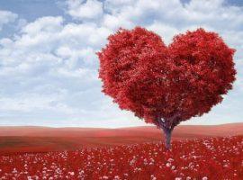 Anlamlı Aşk Sözleri